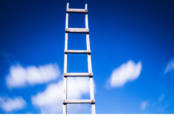 Business development ladder