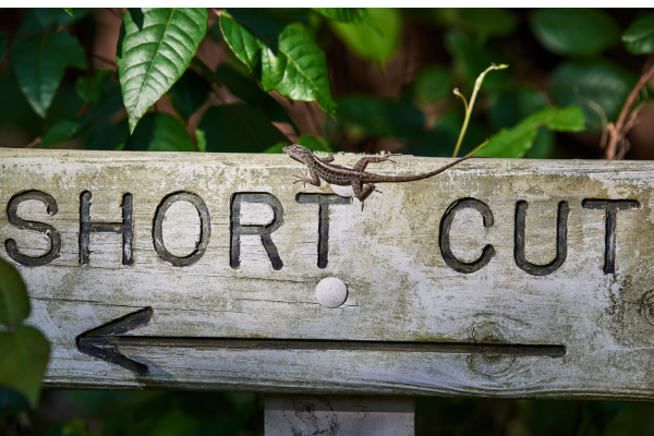 Sales strategy shortcuts