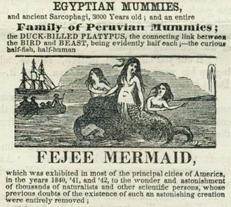 FeeJee mermaid marketing history